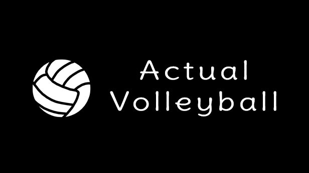 Actual Volleyball