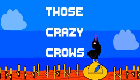 Those crazy crows