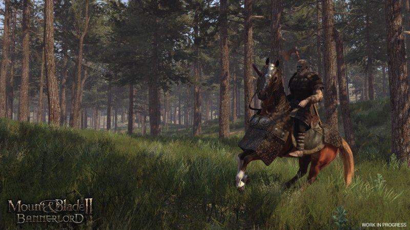 骑马与砍杀2:领主截图第4张