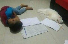 爸爸問女老師睡了嗎?