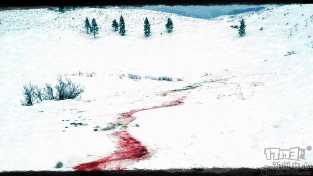 Blood+Trails.jpg