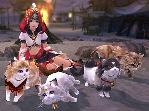 剑网3明教跟宠攻略 明教猫咪任务攻略