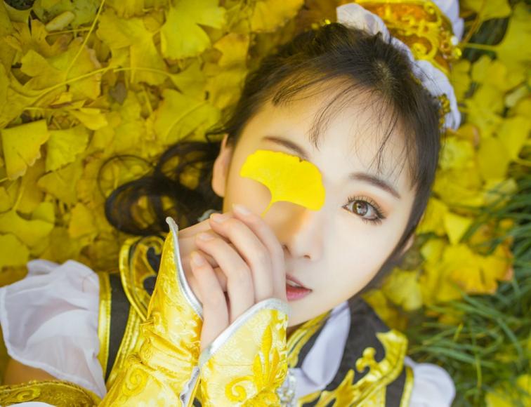 惠风和畅杏叶黄