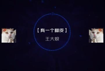 翻车大队活动录音集锦秀