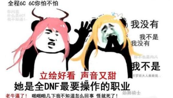 当年玩DNF被骗惨了,积累了半年的金币,竟然在转账上被做了手脚!