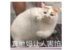 台湾玩家评黑神话悟空