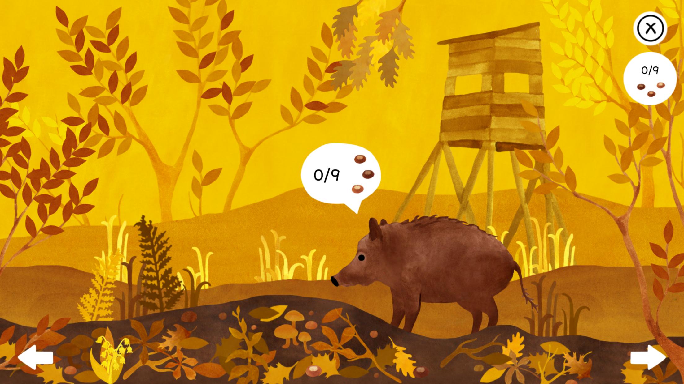 圆滚滚的小动物 清新版大家来找茬《隐藏森林》