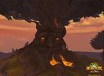 八大奇迹:神圣居树