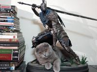 玩家晒《黑魂》狼骑士手办与猫主子合照:我好方!