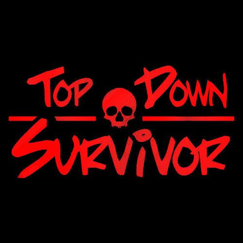 Top Down Survivor