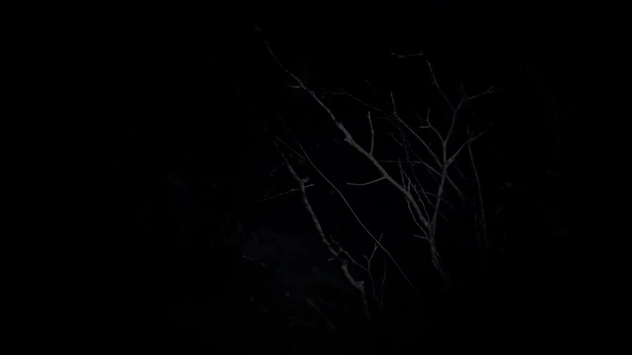 《生化危机8》预告视频