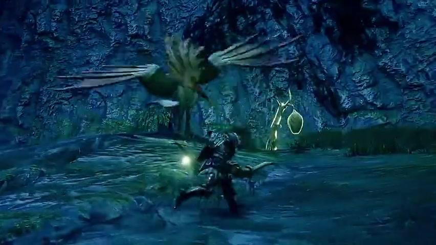 """《怪物猎人:崛起》""""伞鸟"""""""