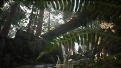 《猎人竞技场:传奇》7月3日终极测试开启