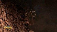 《神魔大陆2》经典服今日正式开启!