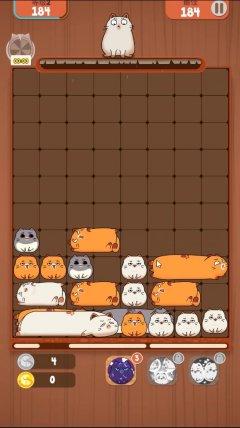 3分钟试玩实录:《互撸猫方块》手游2月1日开测