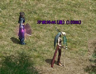 《征途私服》龙武大陆特色绿装玩法版本鉴赏